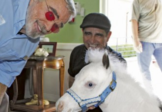 Future Therapy Horse 'Anthem' Debuts in Burt Reynolds Film